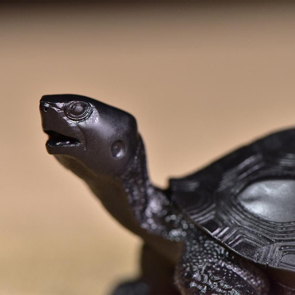 阿拉善玉玉雕 长寿龟
